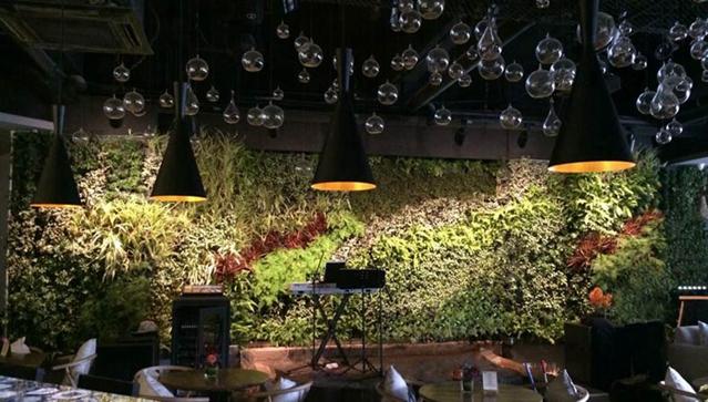 酒吧室内垂直绿化