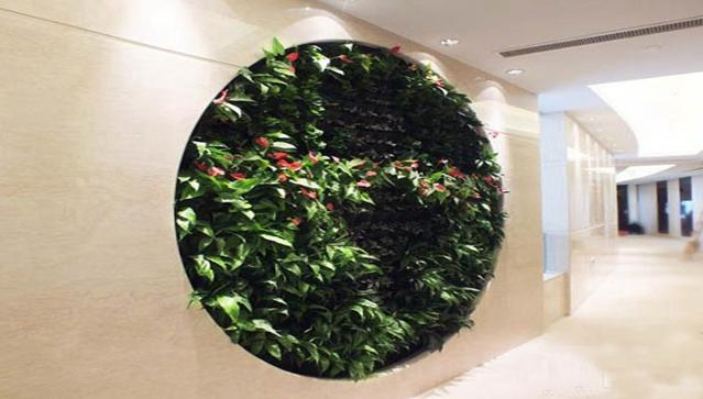 酒店垂直绿化