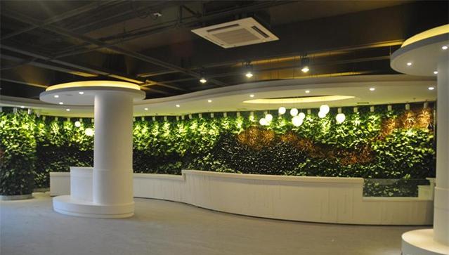 商业区室内垂直绿化