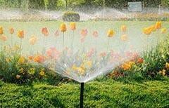 自动喷灌滴灌系统