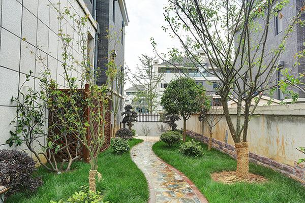 在你的花园设计中使用薰衣草的9种方法