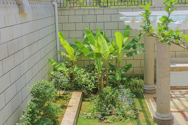 上海花园风水就应该这样运用!